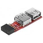 Adaptateur 2 ports USB 2.0 internes sur carte mère pas cher