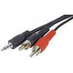 Câble audio Jack 3.5 mm stéréo mâle / 2 RCA mâles (5 mètres) pas cher