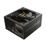 Enermax Revolution X't II ERX750AWT 80PLUS Gold pas cher