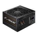 FSP Hexa 85+ 550W pas cher