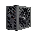 FSP Hydro GE 550 pas cher