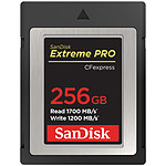 SanDisk Extreme Pro CFexpress Type B 256 Go pas cher