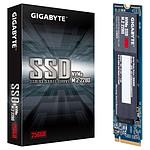 Gigabyte NVMe SSD 256 Go pas cher