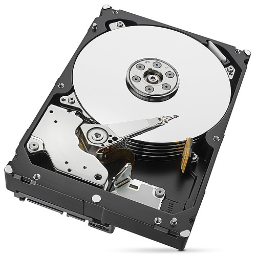 Seagate SkyHawk 1 To pas cher