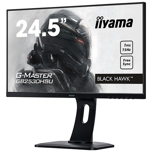 """iiyama 24,5"""" LED - G-MASTER GB2530HSU-B1 Black Hawk pas cher"""