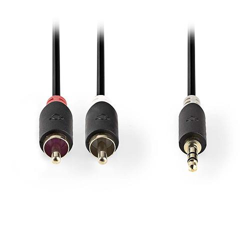 Nedis Câble Audio Stéréo Jack 3.5 mm vers 2 x RCA mâle - 2 mètres pas cher