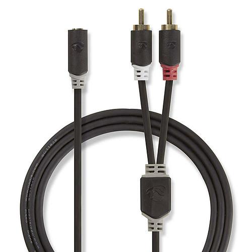 Nedis Câble Audio Stéréo 2 x RCA Mâles vers 3.5 mm Femelle - 20cm pas cher