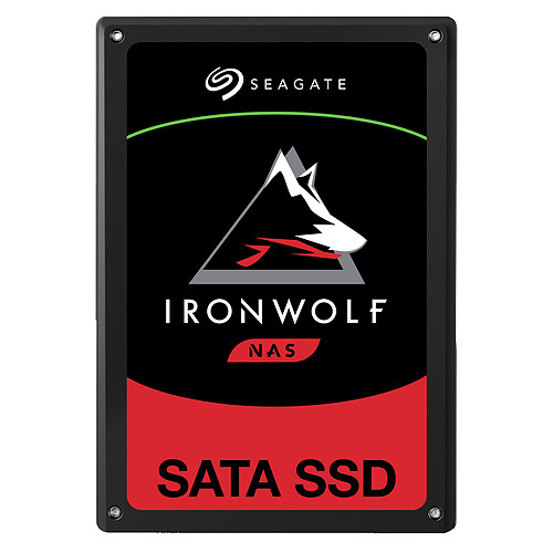 Seagate SSD IronWolf 110 3.84 To pas cher