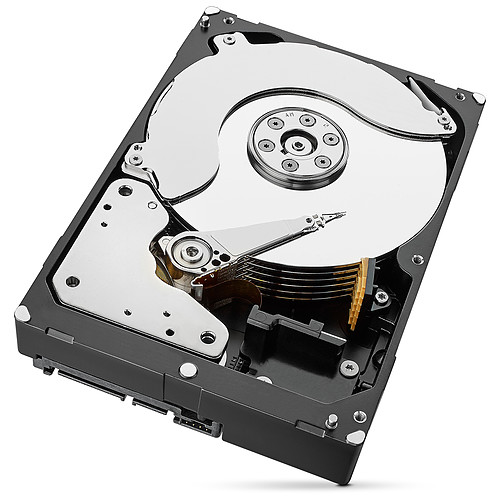 Seagate IronWolf Pro 8 To pas cher
