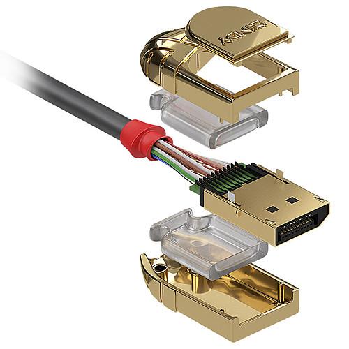 Lindy Gold Line DisplayPort 1.4 (0.5 m) pas cher