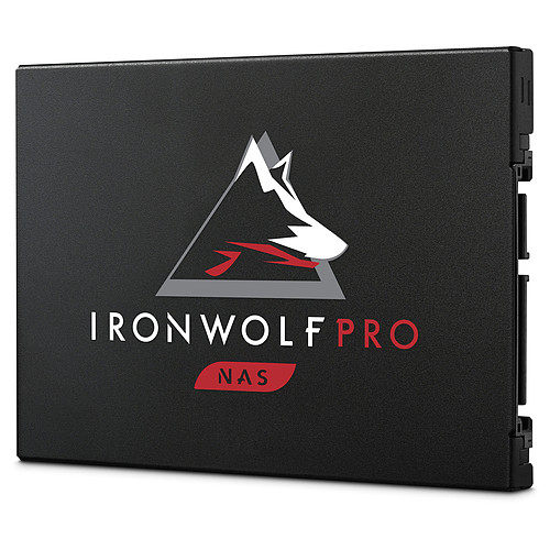 Seagate SSD IronWolf Pro 125 480 Go pas cher