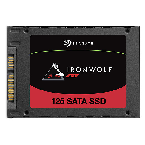 Seagate SSD IronWolf 125 4 To pas cher