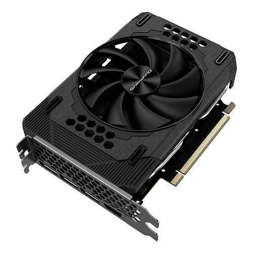 Gainward GeForce RTX 3060 Pegasus pas cher