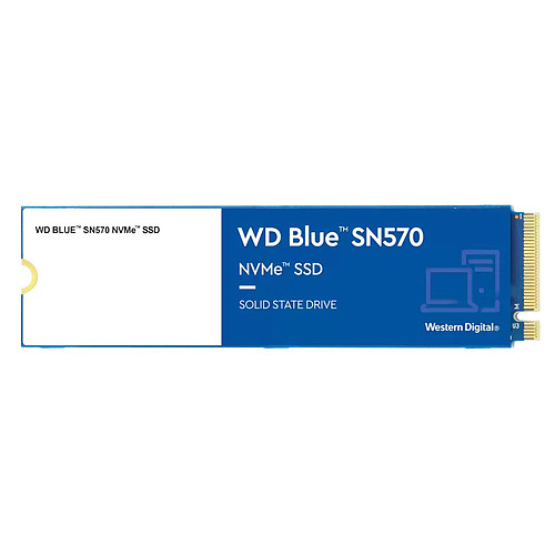 Western Digital SSD WD Blue SN570 250 Go pas cher