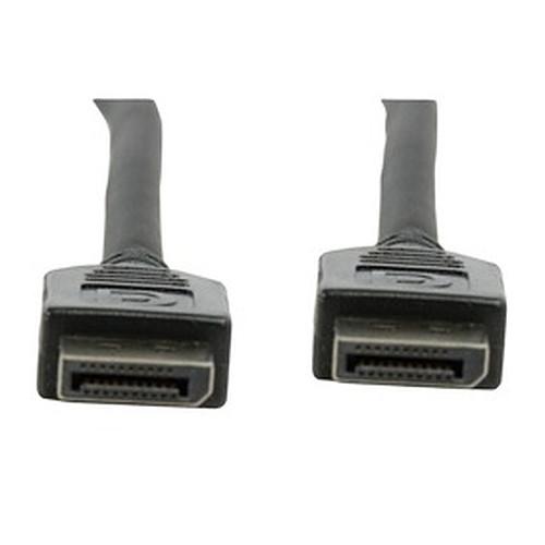 Câble DisplayPort mâle/mâle (1 mètre) pas cher